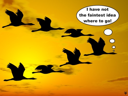 Cartoon: migrant birds (medium) by thalasso tagged migrant,bird,migratory,navigation,satnav,way,finding,searching,lost