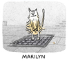 Cartoon: heatwave (small) by markus-grolik tagged cat,katze,marilyn,billy,wilder,hollywood,pussy,monroe,star,heat,hitze,new,york,sommer,grolik,cartoon