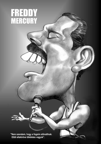 Cartoon: Freddy Mercury (medium) by Szena tagged freddy,mercury,singer,quin