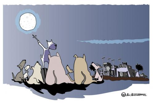 Cartoon: MOON OVER LOS ESCULLOS (medium) by ali tagged hunde,mond,anheulen,nachts,dogs,moon