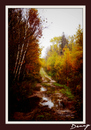 Cartoon: The Lake road 4 (small) by Krinisty tagged lake,trees,dirt,road,fall,scenery,krinisty,art,photography