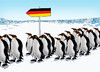 Cartoon: gerpenguins (small) by kotrha tagged germany,peuguins,immigrants,europe,world,afrika,merkel
