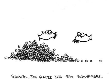 Cartoon: Schwanger. (medium) by puvo tagged schwanger,pregnant,fisch,fish