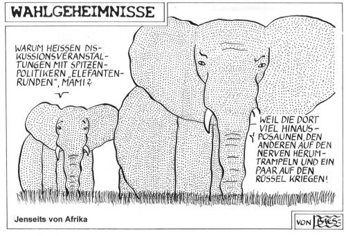 Cartoon: Jenseits von Afrika (medium) by BAES tagged politik,elefant,tiere,wahlen,afrika