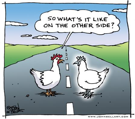 Cartoon: The Other Side (medium) by JohnBellArt tagged chicken,cross,road,other,side,death,ghost