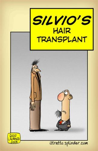 Cartoon: Hair transplant (medium) by Giulio Laurenzi tagged politics