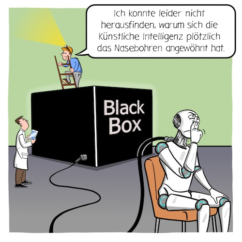 BlackBox-Problem