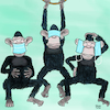 Cartoon: Drei weise Affen (small) by Yavou tagged sarscov2,subjects,coronavirus,affen,monkey,masks,corona,covid19,covid,virus,pandemic,pandemie,meinungsfreiheit,untertanen,demokratie,propaganda,apes,freedom,of,speech,democracy,policestate,polizeistaat,authotarianism,totalitarismus,totalitarism,fear,angst