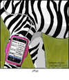 Cartoon: zpod (small) by noodles tagged ipod,music,zebra,black,and,white,noodles
