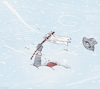 Cartoon: Surrendering to Whiteout (small) by NEM0 tagged white,flag,winter,cold,blizzard,storm,snowstorm,snow,fall,snowing,weather,winterstorm,nemo,nem0