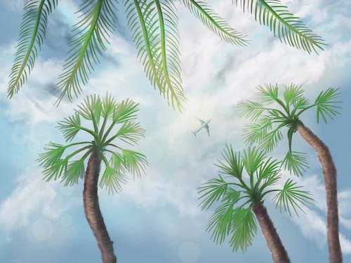 Cartoon: Holidays - Digital Painting (medium) by alesza tagged digital,painting,palm,trees,summer,sun,airplane,vacation,sky,clouds,travel,traveling,illustration,drawing