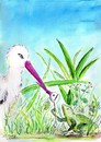 Cartoon: stork and frog (small) by Slawek11 tagged frog animals nature stork