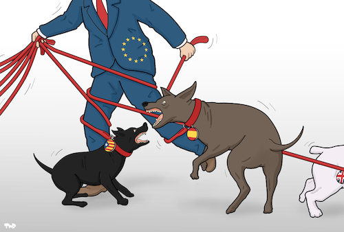 Cartoon: Dog Walker (medium) by Tjeerd Royaards tagged eu,catalonia,brexit,chaos,dogs,fighting,conflict,mess,eu,catalonia,brexit,chaos,dogs,fighting,conflict,mess
