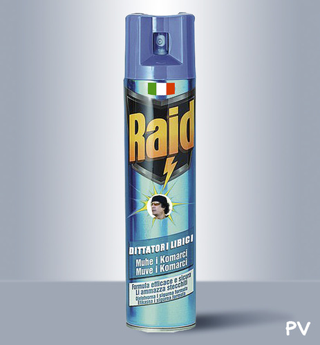 Cartoon: RAID spray (medium) by pv64 tagged raid,gheddafi,mission,war,pv