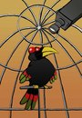 Cartoon: Bird Watcher... (small) by berk-olgun tagged bird,watcher