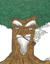 Cartoon: The wise old tree (small) by m-crackaz tagged tree,shakin,leaf,leaves,trunk,wood,old