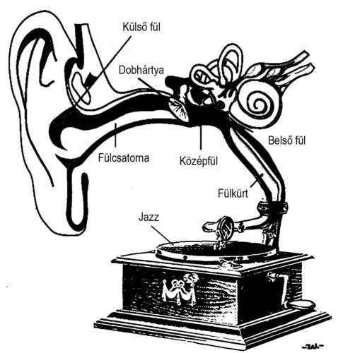 Cartoon: Gramophone (medium) by zu tagged ear,gramophone