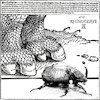 Cartoon: Rhinoceros Beetle (small) by zu tagged rhinoceros,beetle