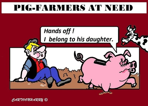 Cartoon: Pig-Farmer (medium) by cartoonharry tagged pigfarmers,pigbanks,financial,problems,cartoon,cartoonist,cartoonharry,dutch,toonpool