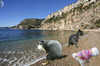Cartoon: Kot d Azur (small) by Vanessa tagged frankreich,urlaub,strand,meer,hund,sonne,france