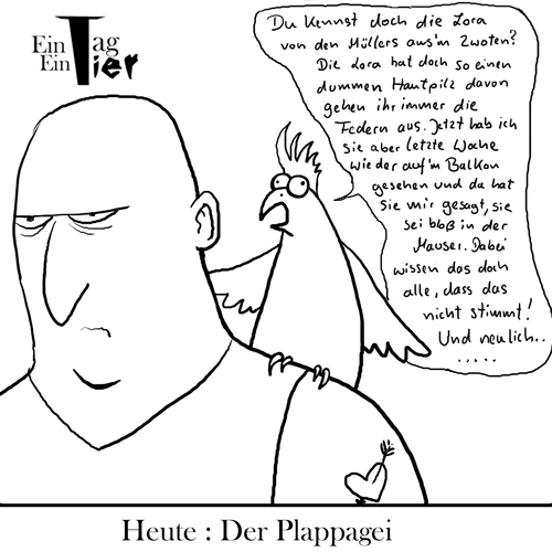 Cartoon: Der Plappagei (medium) by Mistviech tagged tiere,natur,pappagei,plappern,labern,tratschen