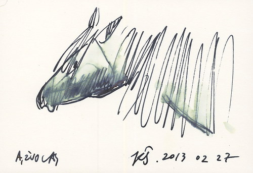 Cartoon: Horses. Sketch (medium) by Kestutis tagged horses,sketch,kestutis,lithuania,pferde