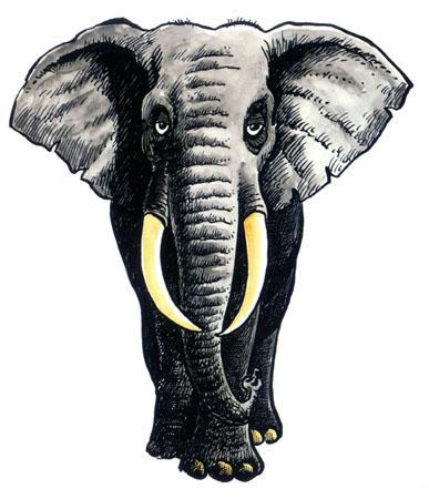 Cartoon: Elephant (medium) by deleuran tagged paintings,caricatures,art,animals,childrens,books,nature,africa