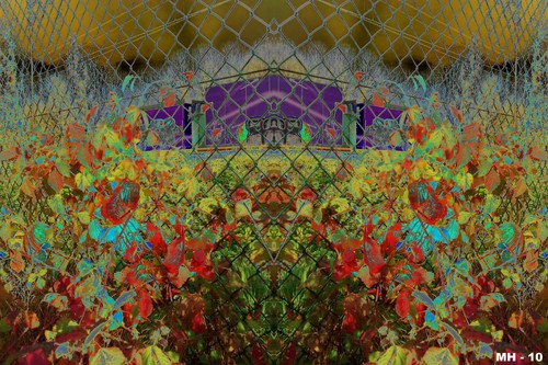 Cartoon: MH - Psychedelic Flower Fest (medium) by MoArt Rotterdam tagged flowers,flowerfest,pshychedelic