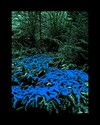 Cartoon: MH - Blue Invasion (small) by MoArt Rotterdam tagged blue,invasion