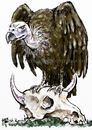 Cartoon: Vulture (small) by Bob Row tagged birds,vulture,financial,speculators