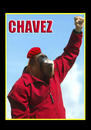 Cartoon: Hugo Chavez (small) by samaniego tagged hugochavez,politicos,famosos,venezuela