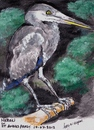 Cartoon: Heron (small) by jjjerk tagged heron,bird,wading,saint,annes,park,cartoon,dublin,ireland
