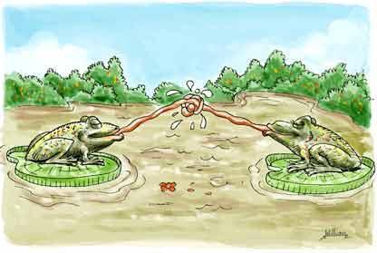 Cartoon: Frog Love (medium) by William Medeiros tagged love,valentine,frog
