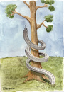Cartoon: Parasites (small) by Marcelo Rampazzo tagged parasites,tree,nature,ecology,urbanism,cityes