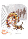 Cartoon: Leopards (small) by ozbek tagged zoo