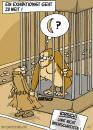 Cartoon: Exhibitionist (small) by mil tagged exhibitionist,flasher,mann,gorilla,zoo,risiko,schmerz,mil