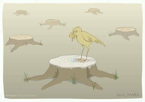 Cartoon: The cry of deforestation (medium) by Wilmarx tagged animal,ecology,deforestation,graphics