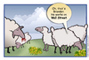 Cartoon: Animal Farm on Wall Street (small) by carol-simpson tagged wall,street,sheep,occupy,wealth,poverty