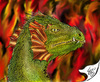 Cartoon: Feuer Drache (small) by swenson tagged drache dragon fire feuer echse