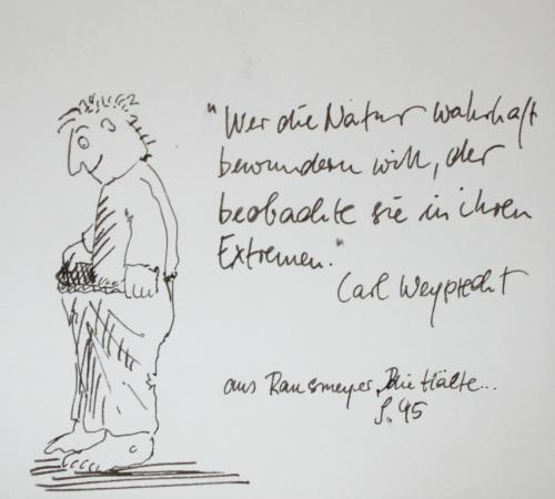 Cartoon: Zitat (medium) by nele andresen tagged eismeer,polarforscher,carl,weyprecht,