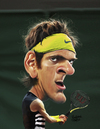 Cartoon: Juan Martin Del Potro (small) by rocksaw tagged juan,martin,del,potro