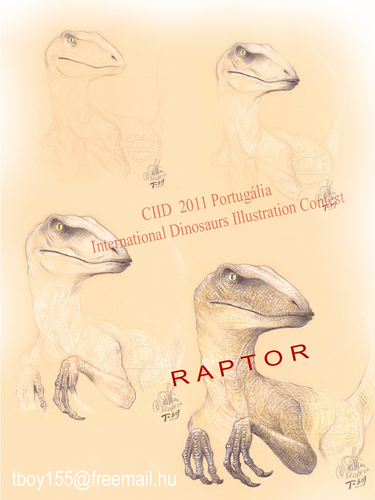 Cartoon: RAPTOR (medium) by T-BOY tagged raptor