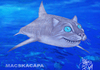 Cartoon: Scyliorhinus retifer (small) by T-BOY tagged scyliorhinus,retifer