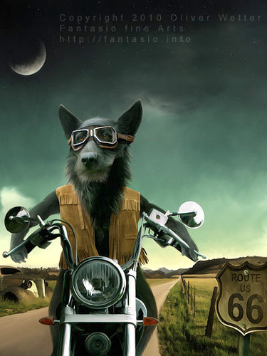 Cartoon: Route sixtysix (medium) by fantasio tagged easy,rider,wolf,lonesome,biker,harley,route,66,kult,anthro