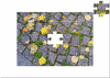 Cartoon: HERBSTPUZZLE (small) by lesemaus tagged herbst,puzzle