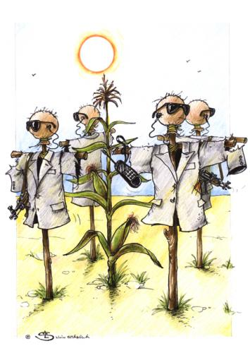 Cartoon: agriculture (medium) by Liviu tagged scarecrows,corn,protection,
