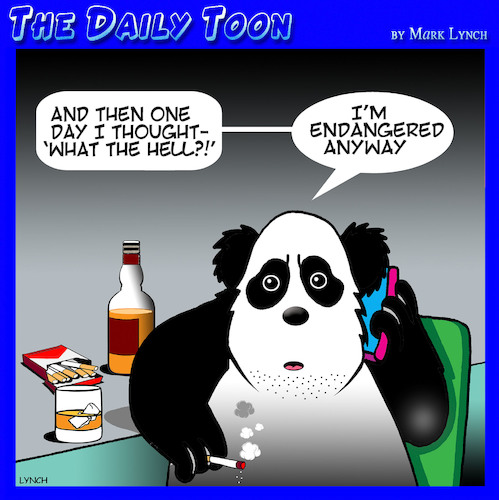 Cartoon: Endangered species (medium) by toons tagged panda,endangered,animals,smoking,heavy,drinker,panda,endangered,animals,smoking,heavy,drinker