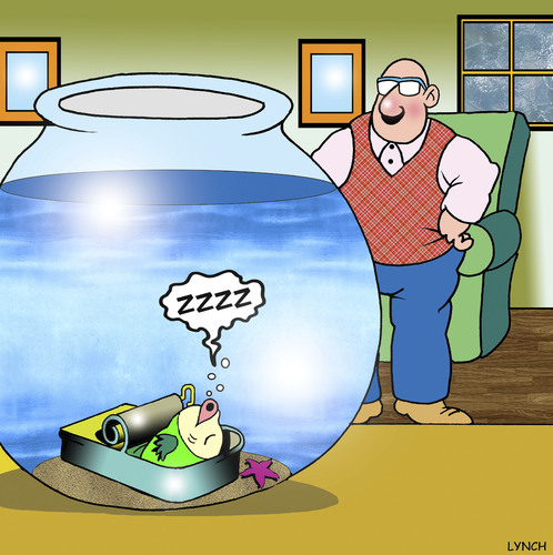 Cartoon: The sleeper (medium) by toons tagged sardines,fish,tank,pets