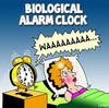 Cartoon: alarm clock (small) by toons tagged pregnant,biological,alarm,clock,babies,children,clocks