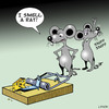 Cartoon: I smell a rat (small) by toons tagged rats,mousetrap,cheese,hygene